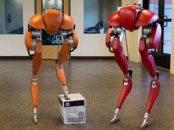 Cassie, le robot d'Agility Robotics, a appris à marcher tout seul grâce à l'apprentissage par renforcement